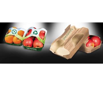 Bandejas de cartón con tapa para fruta | Servicios